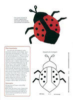 applique coccinelle (1)